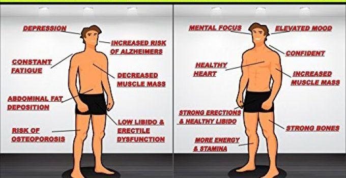 Testosterona (Além da Saúde Física): Analisamos o Comportamento e a Psicologia de quem tem muito disso